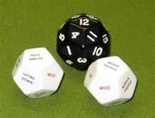 "DISCIPLINE DICE / Black  ""WOW""  $16.99"
