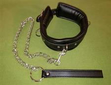 Three Ring Padded Leather Collar and Leash - $19.99  - An Awesome Collar